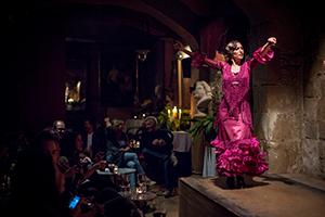 Espectáculo flamenco en Barcelona - Palau Dalmases 09