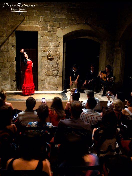 Espectáculo flamenco en Barcelona - Palau Dalmases 02