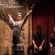 Flamenco place in Barcelona - Palau Dalmases 00