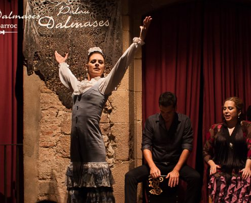 Flamenco place in Barcelona - Palau Dalmases 00