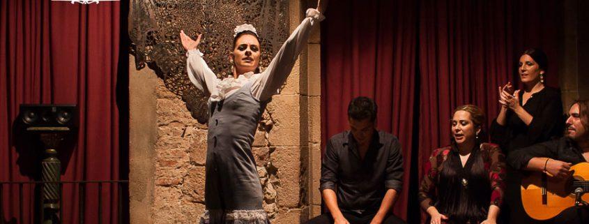 Palau Dalmases - Equipo Flamenco 1