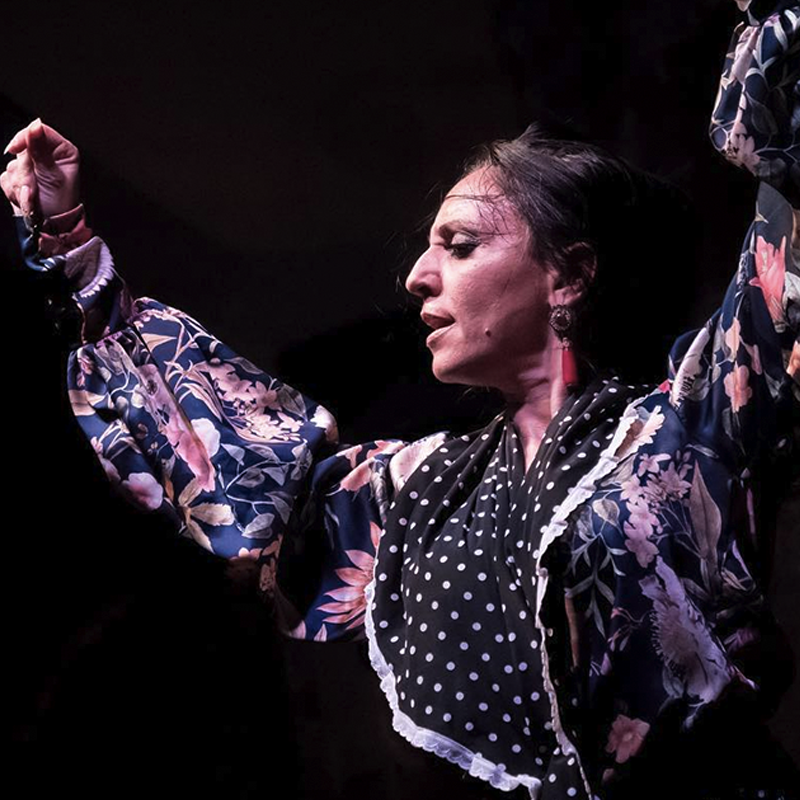factis about flamenco I Palau Dalmases