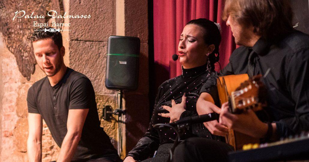 Flamenco en Palau Dalmases