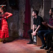Razones para ver flamenco en Barcelona I Palau Dalmases