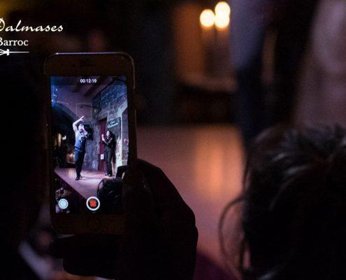 Fotografías Flamenco en Barcelona I Palau Dalmases