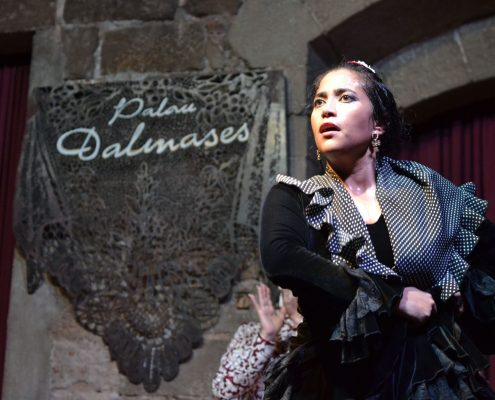 Flamenco en Palau Dalmases I Levent Semuncu