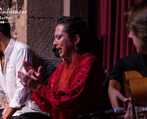 Flamenco en Barcelona I Palau Dalmases