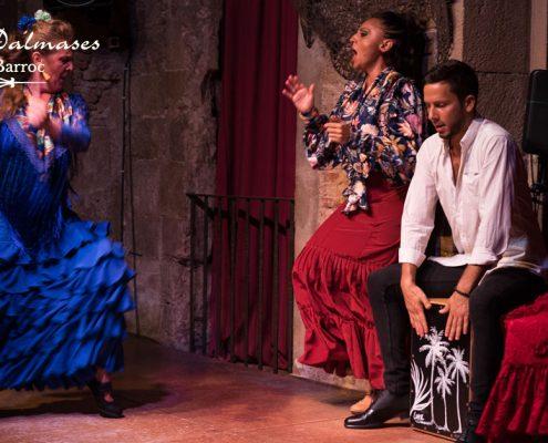 Flamenco en Barcelona en Navidad I Palau Dalmases